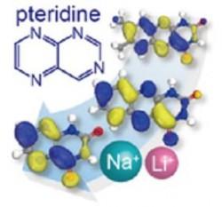 국내 연구진이 생체 대사 작용을 모방해 만든 프테리딘 분자를 이차전지의 전극소재로 구현하는 데 성공했다. - 서울대 제공